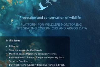 EO4wildlife Newsletter Issue-3 July-2017