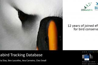 6th International Albatross and Petrel Conference